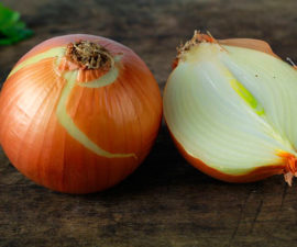 cebolla en medicina natural