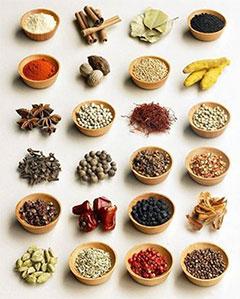 Plantas de la medicina natural china