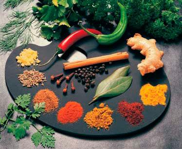 Plantas y hierbas medicinales